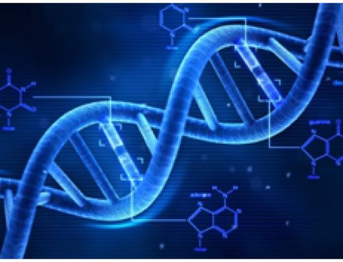 Teste de DNA para vinculo paterno